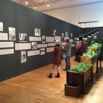 Friedensreich Hundertwasser / Buchheim Museum 2016
