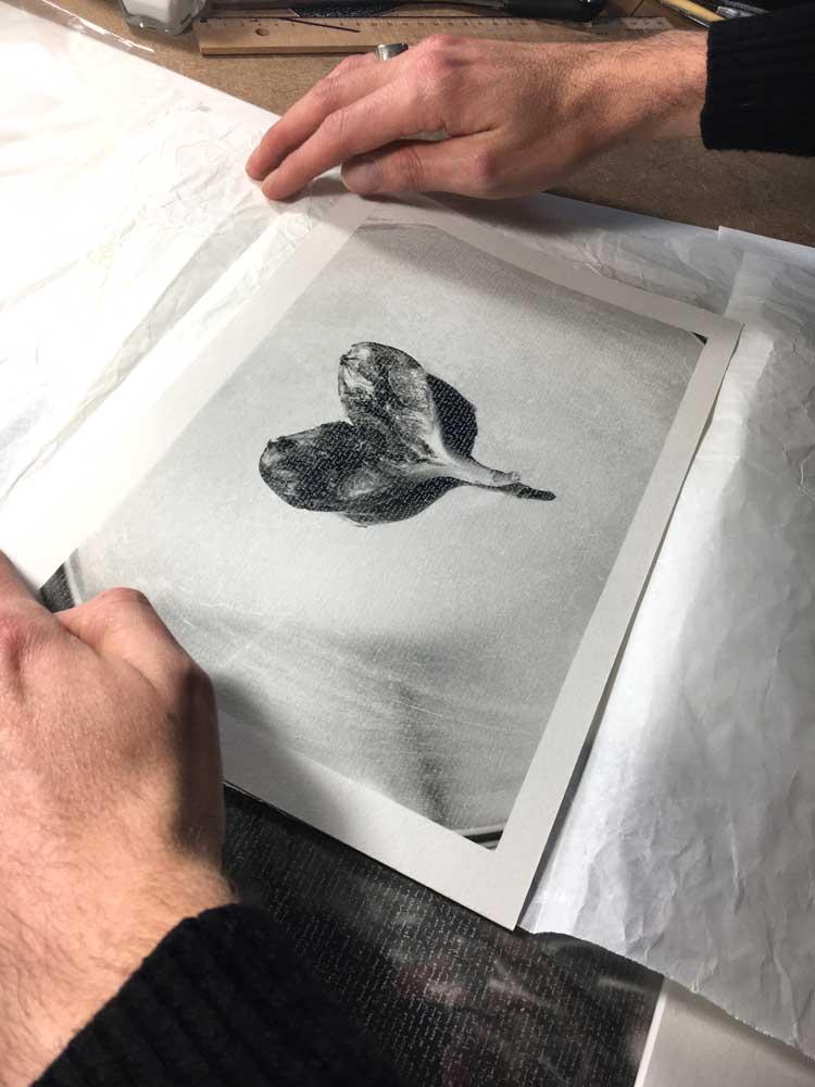 moreform art THS26
